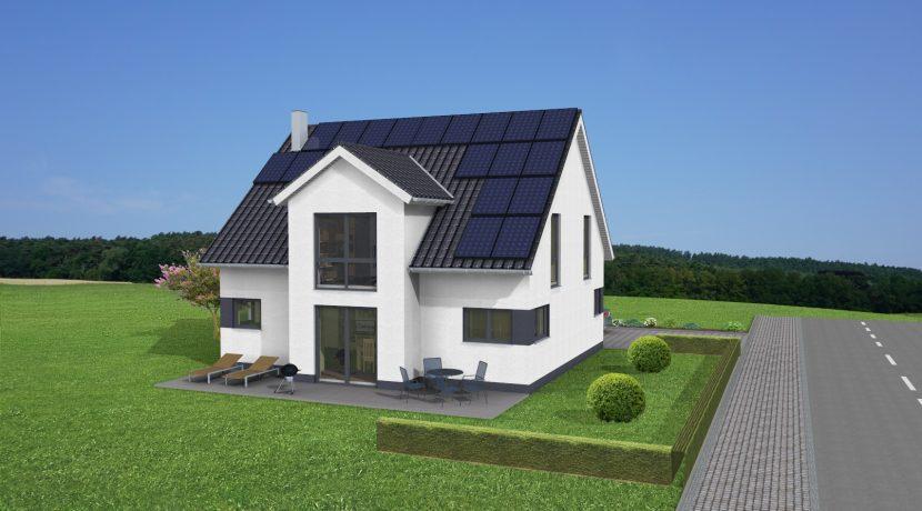 Classico164SD115_3D-Garten_PV-Black-Rahmen_Moduldraufsicht-blau