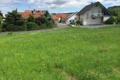 2016-07-06_Zellingen-Breitwiese 022