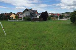 2016-07-06_Zellingen-Breitwiese 027