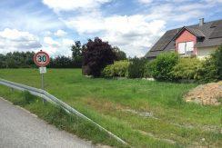 2016-07-06_Zellingen-Breitwiese 039